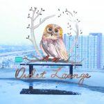 คอร์ดเพลง ฟ้าสีจาง (Time Lapse) - Owlet Lounge